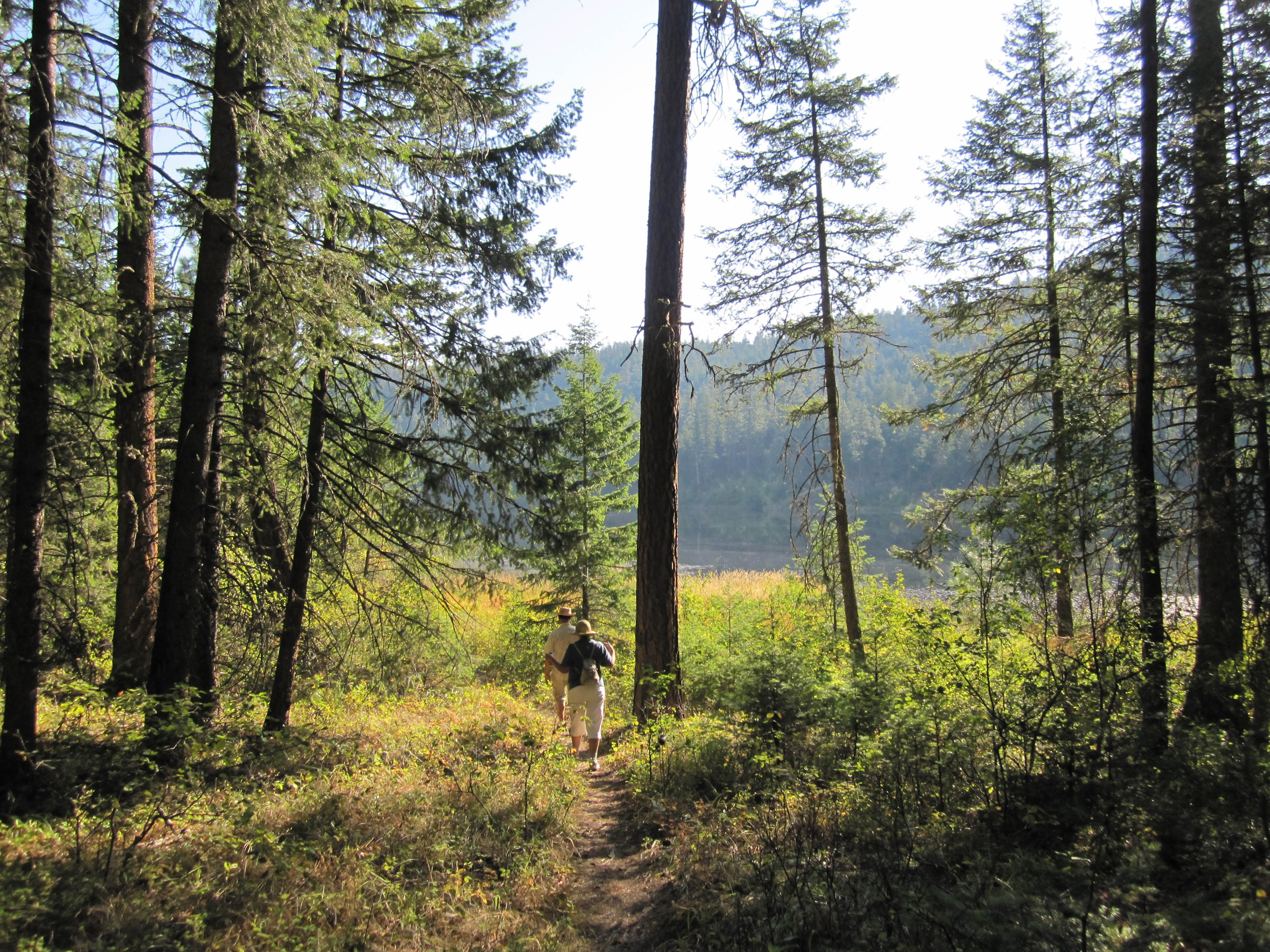 Rose Valley Trails.jpg