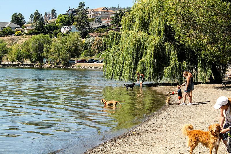 Gellatly Dog Beach - CWK Image.jpg