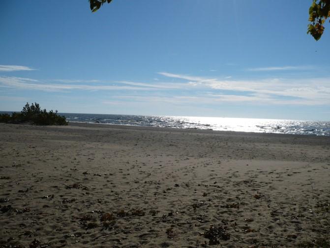 Cedar Beach.jpg