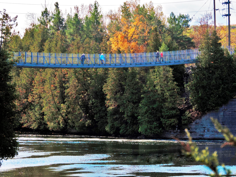 Suspension Bridge (2).jpg