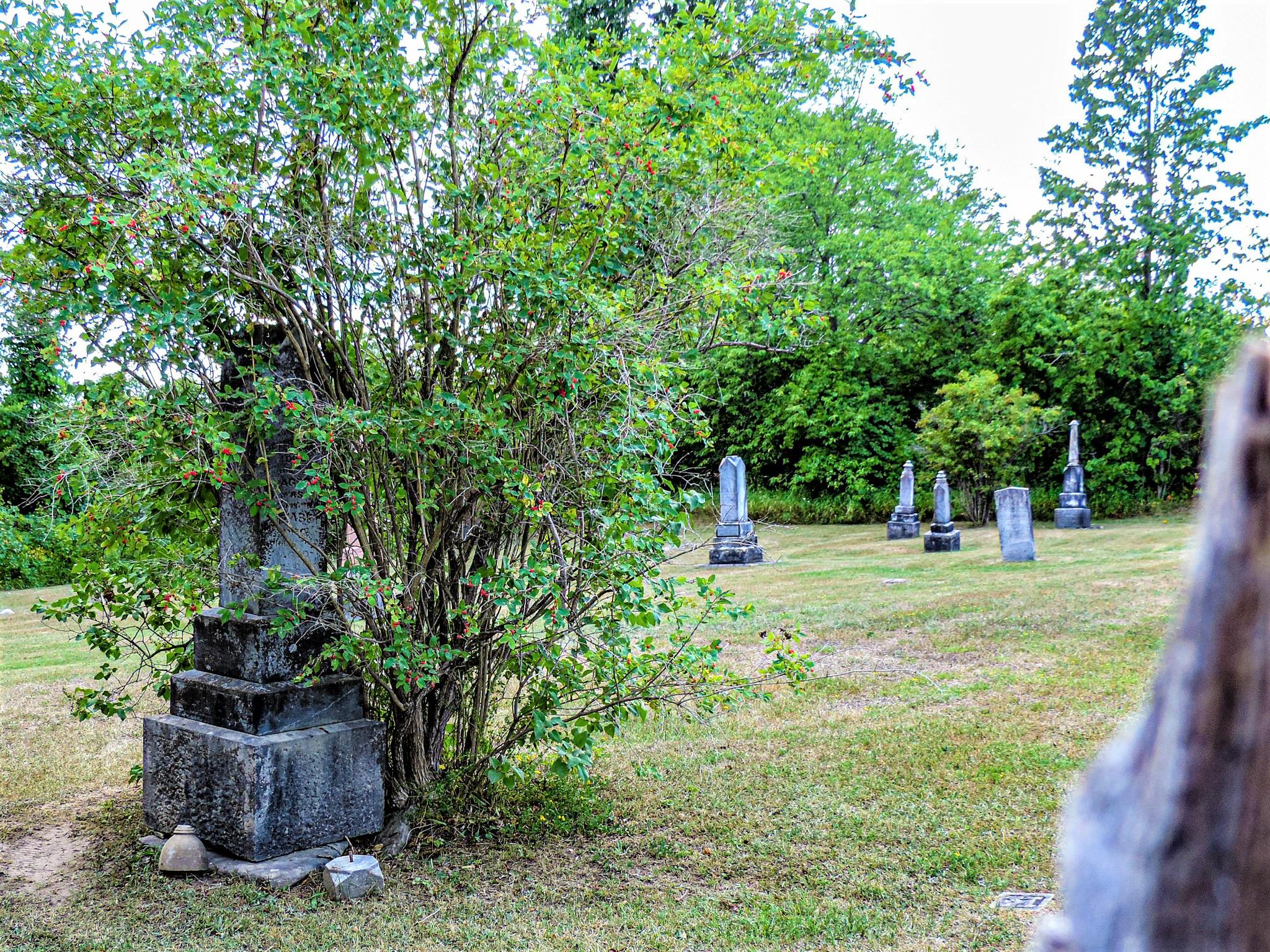 cemetery generic 3.JPG