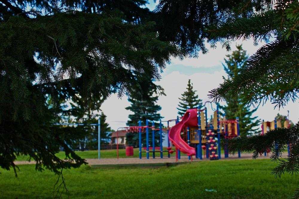 Park-Trees.jpg