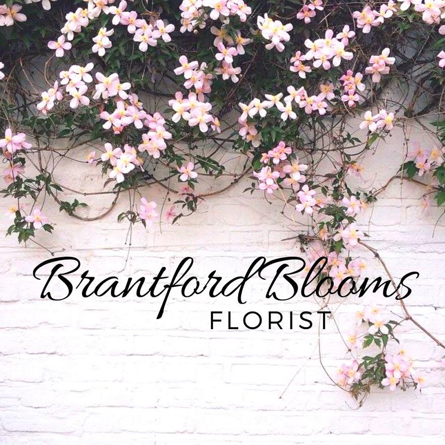 Brantford Blooms.png