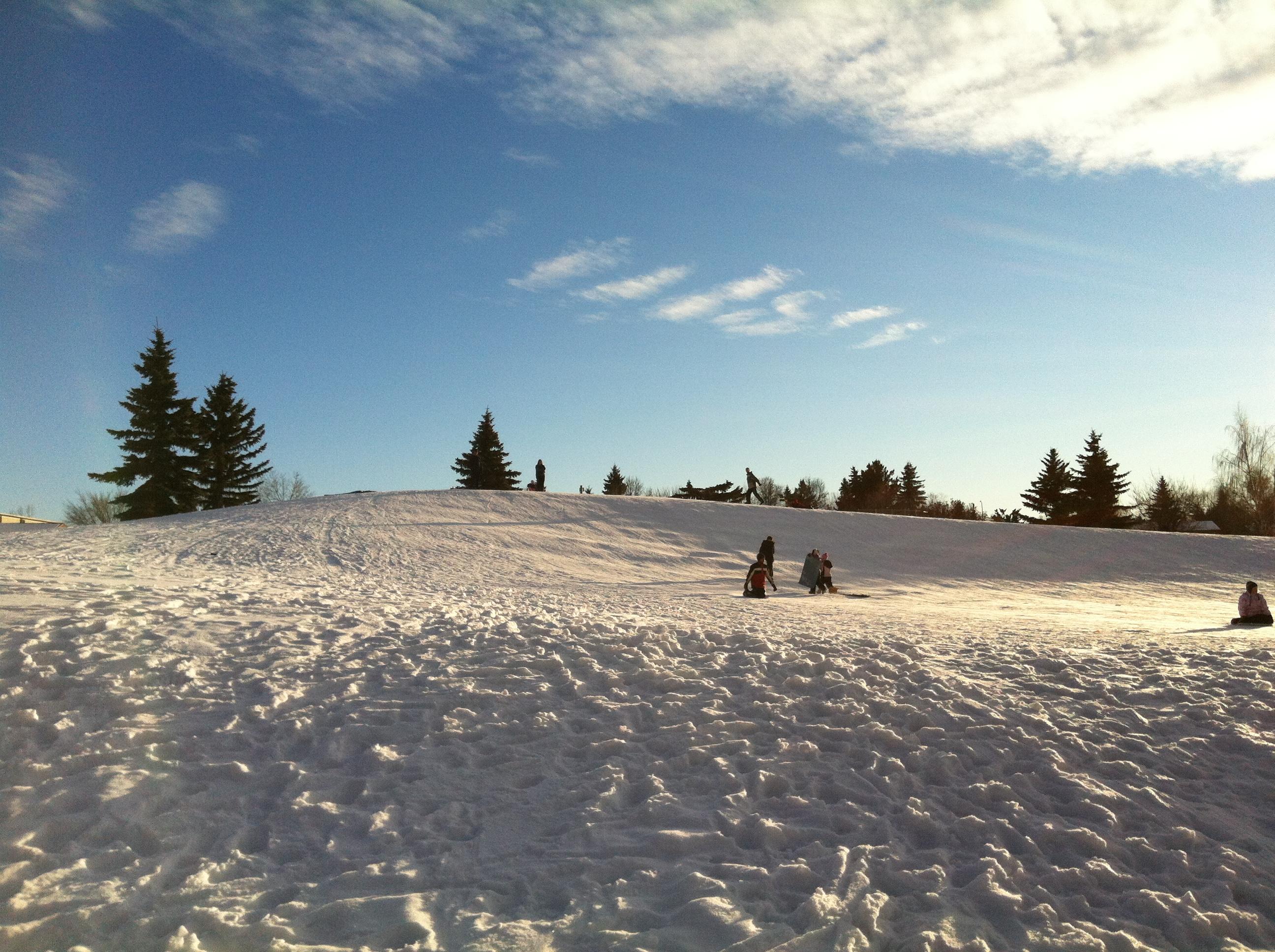 Cres Hts Toboggan hill Feb 2012 (4).JPG