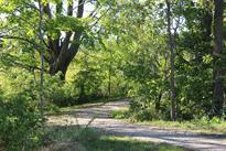 christner-trail.png