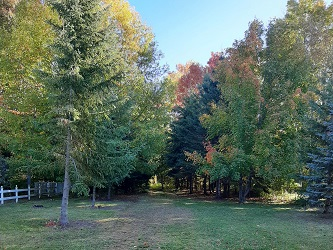 Image of Blueberry Trail Park North