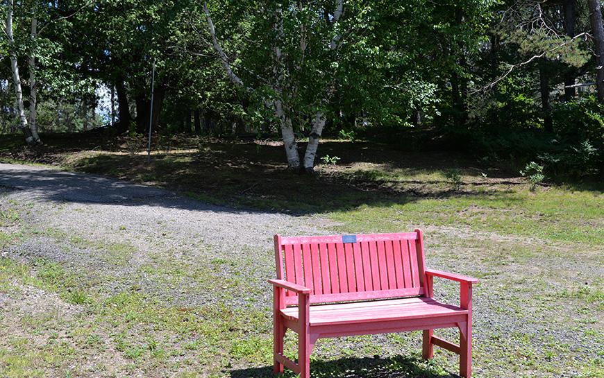 arena beach bench.jpg