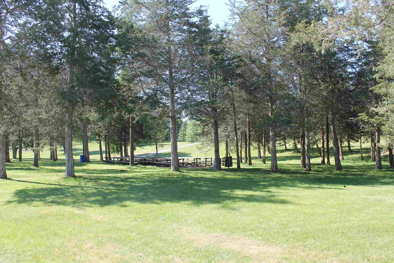 Riverside Park Picnic Site.jpg